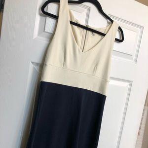 J. Crew Navy & Ivory Dress